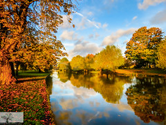 The Great Ouse (Embankment) (Rob Felton) Tags: felton robertfelton river thegreatouse greatouse theembankment embankment cloud clouds reflection autumnal autumn red gols blue tree trees salix weepingwillow willow