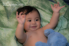 DSC_9748a (Russell Bruce Photography) Tags: new portrait baby elephant cute london beautiful smile laughing studio toy happy photography born concentration photo model nikon infant shoot photographer russell play bruce united philippines feather posing kingdom filipino modelling d800 d800e