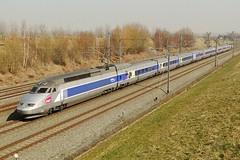 Belgian High Speed - TGV Rseau on it's way to Brussels (Franky De Witte - Ferroequinologist) Tags: de eisenbahn railway estrada chemin fer spoorwegen ferrocarril ferro ferrovia