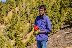 Trek to Tunga mata temple (Sougata2013) Tags: travel india mountain flower nature forest trek landscape march spring hill adventure rhododendron mandi hilltop himachalpradesh traveler 2015 prashar tungamatatemple