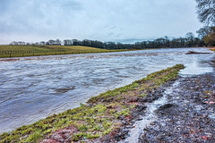 river in flood (billdsym) Tags: water river scotland flood annan