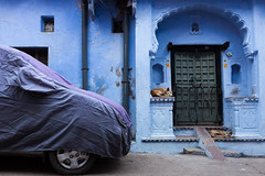 Sleeping, Bundi (Boris Hamilton) Tags: city blue sleeping india dogs car rajasthan bundi