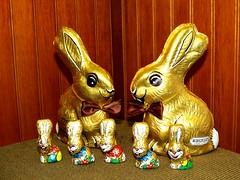 Osterhase - El Conejo de Pascua (Bernhard WK) Tags: chocolate conejo pascua ostern huevo hasen osterhase conejos liebres