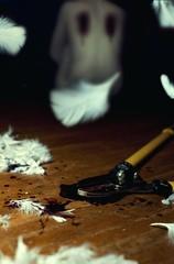 Week 43: Feathers (Rachel.Adams) Tags: angel dark pain hurt blood wings sad feathers feather xmen fallenangel horror despair depressed bloody melancholy flightless darkart harmful givingup plucked rippedoff whitefeathers selfharm 52weekproject bloodyfeathers cutoffwings