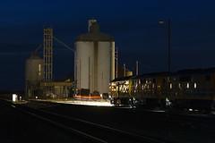 Road Ahead (Tom Marschall) Tags: train 22 gm south grain australia sa mallee loxton gwa 2216 gm42 gm43 3142s