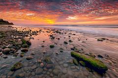   no mercy   (zakies) Tags: beach greenland borneo lowtide mossy borabora beufort nomercy leefilter nikond700 sabahsunset leeproglass zakiesphotography zakiesimage batuluangkualapenyu greencarpetproduction
