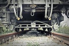Solo Andata (enricoparavani) Tags: puglia binari treni tragedia lutto ferrovie