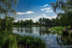 Yuanmingyuan  (mingsquared) Tags: china park lake water beautiful garden landscape nikon scenery beijing ruin palace   nikond3200  yuanmingyuan tokinaaf1224mmf4