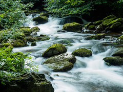 Walk Lynton to Watersmeet E7120252_08 (tony.rummery) Tags: longexposure england water rock river rocks stream unitedkingdom somerset olympus gb omd watersmeet lynton em10 mft microfourthirds northdevondistrict