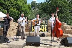 Hot Rock Pilgrims (Jeff G Photo - 2m+ views! - jeffgphoto@outlook.com) Tags: hotrockpilgrims bluegrass bluegrassmusic oldtime oldtimemusic alexandrapalacesummerfestival2016 alexandrapalacesummerfestival alexandrapalace danedwards hughmurray kierantowers samrose
