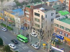 View from Fraser Suites (Travis Estell) Tags: korea seoul southkorea jongno nakwon republicofkorea frasersuites jongnogu nakwondong nagwondong nagwon     frasersuitesinsadong