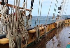 La Recouvrance (patrick_milan) Tags: boat ship bateau mer sea finistre bretagne recouvrance colors brittany finistere plouguin saintpabu pabu ploudalmezeau france breiz