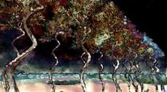 Dear S (OFF till 14th Bamboo Barnes - Artist.Com) Tags: secondlife virtualart digitalart surreal vivid photo painting light shadow bamboobarnes tree black yellow red landscape blue green furillen purple pink
