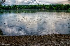 DSC_2586 (Kubiii Photography) Tags: lila photography nikond7000 nikon nikonphotography leipzig kubiiiphotography lake auensee nature sand beach rain rainy weather clouds sky boat boats green