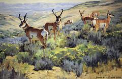 Spring Antelope (detail), Ken Carlson (V. C. Wald) Tags: jacksonhole grandtetonnationalpark wildlifeart jacksonwyoming kencarlson nationalmuseumofwildlifeart springantelope