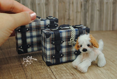 koffer set (Zhanna Zolotina) Tags: dollhouse miniature handmade roombox puppenhaus momoko blythe barbie dolls monster high