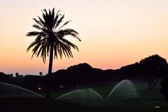 Cuidando el ocio (ZAP.M) Tags: atardecer sunset contraluz silueta novosanctipetri chiclana cdiz andaluca espaa flickr nikon nikond5300 zapm mpazdelcerro