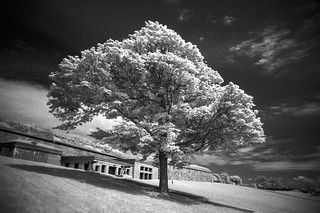 Fort Warren IR II