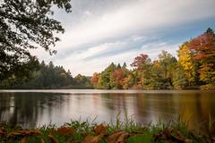 Lac de Bourgogne (Richard Holding) Tags: automne autumn bourgogne burgundy arboretum pzanin