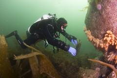 20160803-Eyemouth21 (Dacmirc) Tags: eyemouth diving ukdiving rebreather