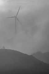 Misty morning turbine (dave.fergy) Tags: dawn monochrome weather landscape windturbine machinery mist blackandwhite mono ashhurst manawatuwanganui newzealand nz