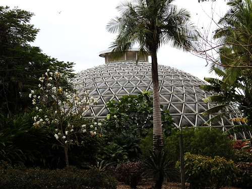 Tropical House, Mt Coot-ha Botanic Gardens, Brisbane