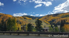 September 28, 2016 - Fall colors on Colorado's Grand Mesa. (Lisa Canfield)