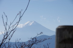 109_1113-IMGP1216_IMGP1216 (moksei14) Tags: 2011 山行 滝子山 201111