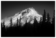 Snow Capped (chadbrowngraphics) Tags: trees bw white black ski oregon portland volcano rocks mt pacific northwest altitude pacificnorthwest hood steep