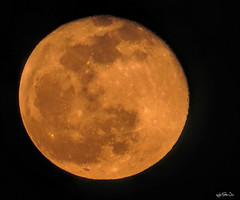 La luna sangrante sobre Rota... (Lola Cortés Neva) Tags: moon blanco catalina spain y negro lola luna bn cielo selene neva diosa espacio rota cortés cráter lolacortésneva lalunasangrantesobrerota