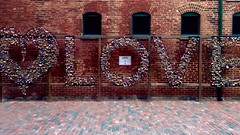 Love (Anthony Banh) Tags: toronto ontario canada cute love beer downtown chinatown afternoon sweet district romance adventure alcohol locks forever date distillery eternal iphone