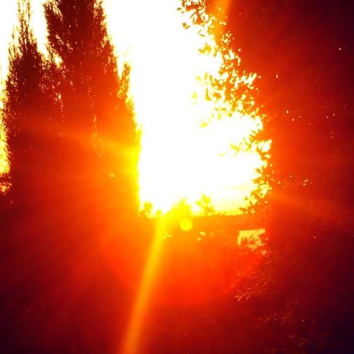حركات وكذا #غروب #الشمس #حمص #سوريا #طبيعة  #sun #sunset #sunshine #sunsetlovers #sunlight