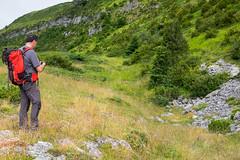 Photo souvenir du champ d'iris (alainlecroquant) Tags: randonne montagne pyrnes valledossau soussouou pontdugoua cornichedesalhas cabane fleur cheval vache troupeau source ruine pierrier fortdherrana cascade vallon ballatous falaisedelatume czy fujixt1 18135 panoramique