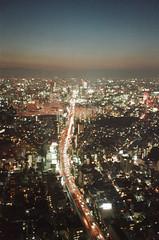 -32 (UME2nd) Tags: fujifilm japan natura classica
