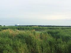 Minsmere RSPB (jameshanlon72) Tags: landscapes naturereserves