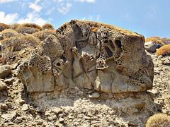 This rock was a part of the bottom of sea before few millions of years...Chroussos beach Lesbos Greece (panoskaralis) Tags: ancient rock stone bottomofthesea beach island lesvosisland lesbos mytilene sea seaside aegeansea greece hellas summer greeksummer summerholidays holidays