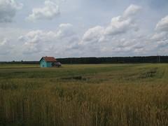 (kjoseph82) Tags: sky farmhouse landscape vojvodina vastlandscapes
