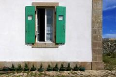 ten little conifers (pix-4-2-day) Tags: blue sky white france flower green window wall frankreich brittany fenster wand himmel bretagne pot shutter grn blau conifers fassade blumentopf finistere ouessant fensterlden weis koniferen