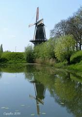Molen Nooit Gedacht - Woudrichem (Cajaflez) Tags: windmill molen woudrichem nederland voorjaar spring korenmolen stellingmolen achtkantig flourmill spiegeling reflectie reflections