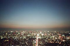 -33 (UME2nd) Tags: fujifilm japan natura classica