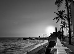 Barra Avenida (Mauriciovitch) Tags: preto branco black white pb bw bianco nero blanco negro blanc noir salvador bahia farol lighthouse faro praia beach sunset por sol