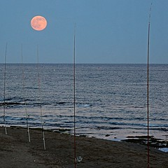 Noche de luna llena - Full moon night (nuska2008) Tags: nuska2008 lunallena elviria marbella mlaga nanebotas mar playa caasdepescar marmediterrneo horizonte carrete olympussz30mr flickr moon fullmoon landscape blue sea harmonyoftheseas beach