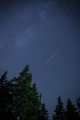 Perseids Shower - Aug 2016 West Vancouver (1 of 1) (DavidGuscottPhotography) Tags: perseids meteor canada britishcolumbia westvancouver 2016 le longexposure