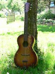 (shortscale) Tags: guitar blues teenager 1962 gitarre framus