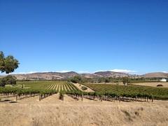 Barrossa Valley