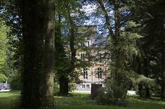 Fort de Paimpont Brocliandre (Philippe Pichon) Tags: plante extrieur arbre chteau fort paimpont brocliandre