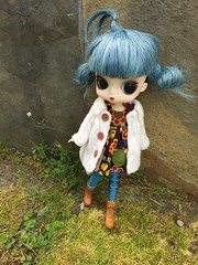 have you seen her kitty? (Dymphna ❀) Tags: blue winter hair sweater doll dress alice coat stock belfry pullip blythe welcome humpty dumpty lunatic buttonarcade byul