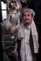 Snowcock and Afghan man (Saeid Aghaei) Tags: travel man restaurant afghan kebab saeid kabul  balkh      baghlan  snowcock aghaei
