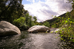 River gently flowing (Stan from Vegas) Tags: california forest river national sequoia kaweah