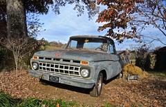 farm Ford, North Georgia (tvdflickr) Tags: classic ford rural truck georgia nikon pickup pickuptruck coolpix p7700 nikonp7700 photosbytomdriggers photobytomdriggers thomasdriggersphotography